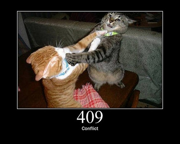 HTTP-Status-Cats-11
