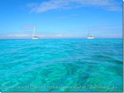 Balvenie and Bandit,  Nicholas Cay