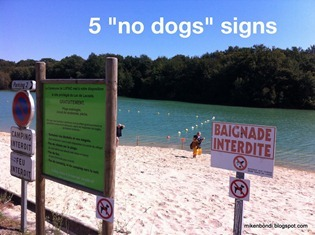 Lupiac bathing area - 5 'no dogs' signs in one place