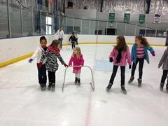 skating- gourp