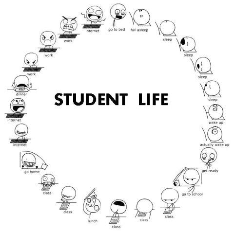 Жизнь студенческая в круговороте...