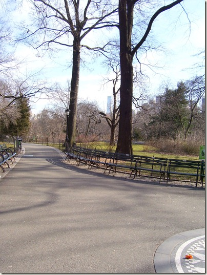 CentralPark2