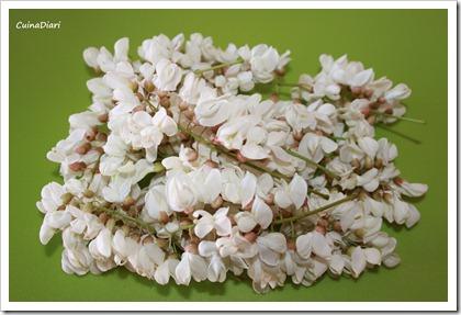 6-5-crespells flor d acacia-ing-ETI
