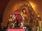 Baby Buddha.jpg