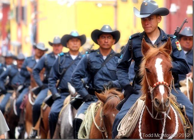 horse line Sm