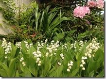 スズランと石楠花