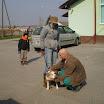 Galerija - Šesta šetnja pasa iz Skloništa 23.3.2013.