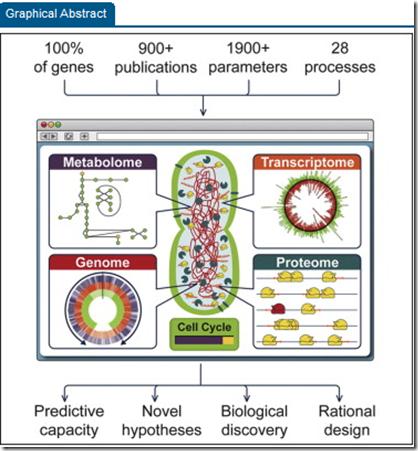 Simulacion microorganismo
