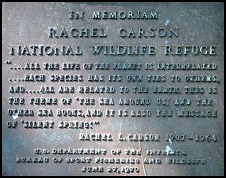 02e3b - Rachel Carson Nature Trail Memorial
