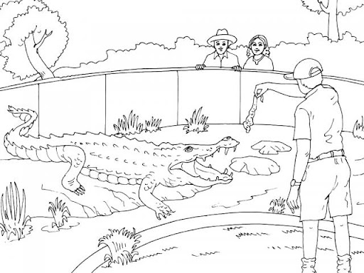 Line Drawing Zoo : Zoo images for drawing