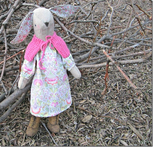 maggie rabbit 018