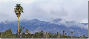 Mt. Lemmon and Snow 009