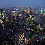 amazing view from tokyo tower by night in Tokyo, Tokyo, Japan