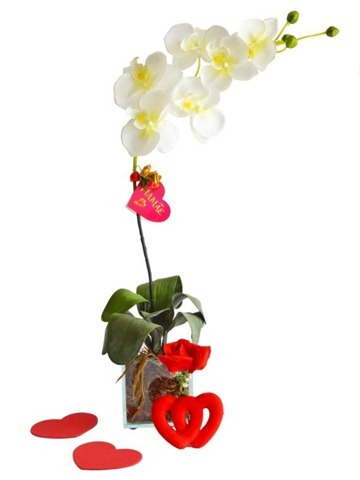 arranjo-de-flores-orquideas-vaso-1907