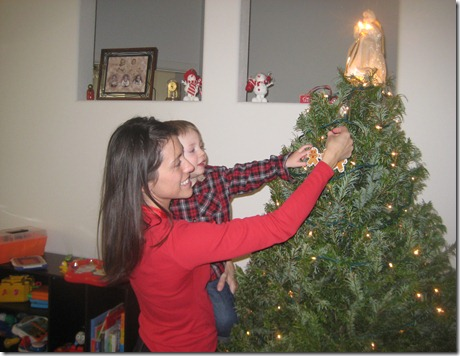 12 01 12 - Getting our Christmas tree (8)