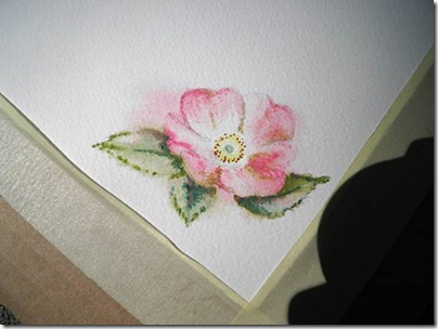 BarbDerksen_watercolorrose5