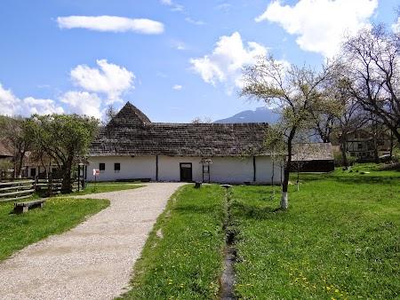 02. Muzeul Satului Branean.JPG