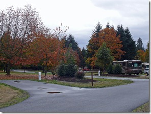 Armitage Park2