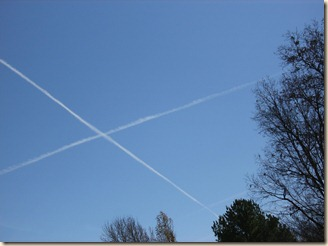 X Marks the Spot in the Hollow