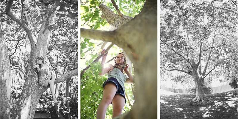 annie in a tree2