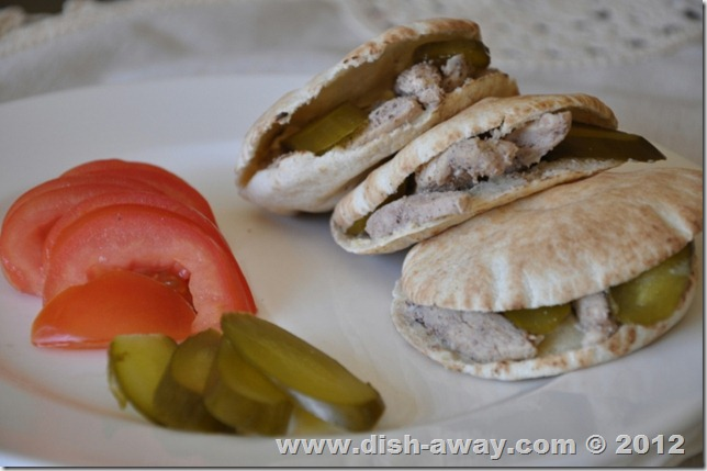 Chicken Shawarma Recipe by www.dish-away.com
