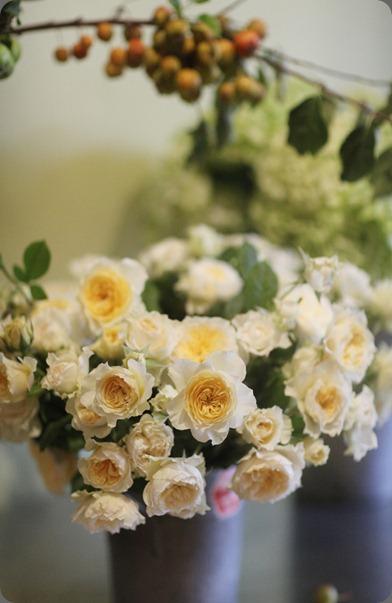 6a0120a5914b9b970c014e8a40c3ad970d-800wi Pilgrim rose by Davis Austin Florali