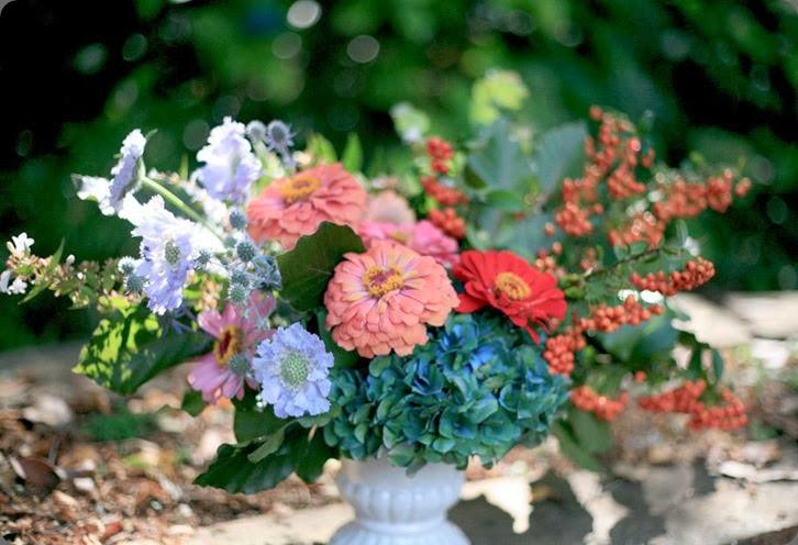 zinnia 31484_233503270108165_1168695911_n  lindseymyra.com aka the liitle flower farm au