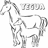6dea55038d1f38bb_baby_horses_coloring_pages.jpg