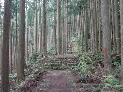 Kumano Kodo 3.jpg