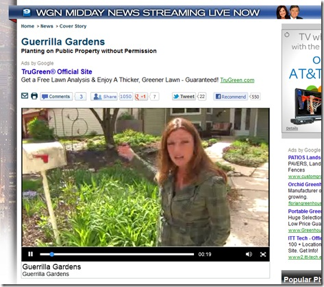 2012 WGN Guerilla Gardening Feature