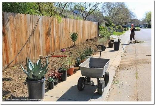 140315_desert_garden_planting1