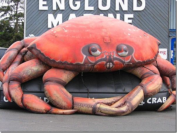 beach-08182007-crab