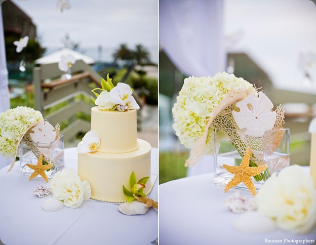 Seashells-wedding-cake karen tran