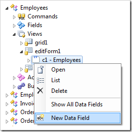Add New Data Fields in editForm1 view of Employees controller.