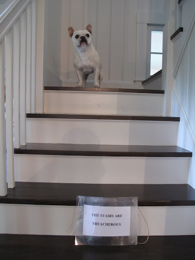 Excuse me, sir?  How long before you get to the stairs?  I need to get down!  I need to eat!  I need to get outside!