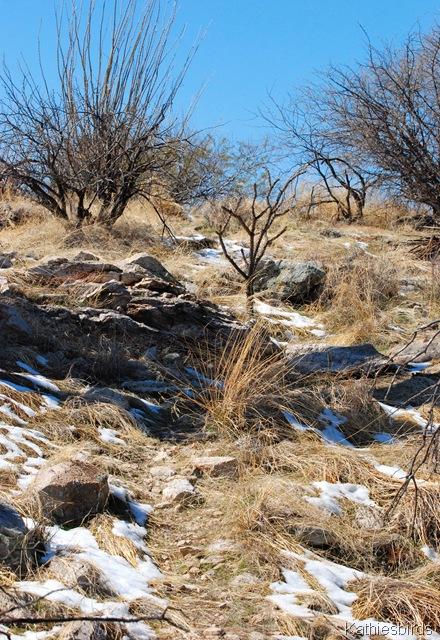 25. hillside-kab