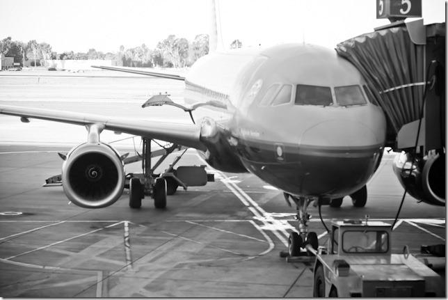 flying-3225