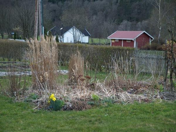 2012-03-30 Hagen på Møll (84)
