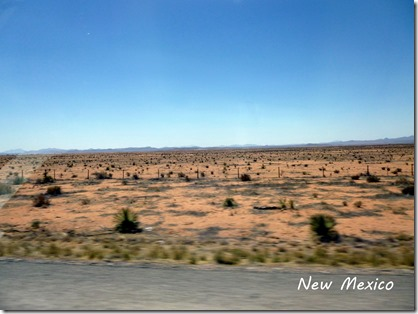 Land of Enchantment? New Mexico