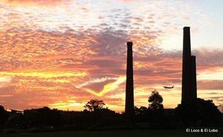 Sydney Park sunset (2)