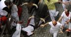 Bulls Rush In