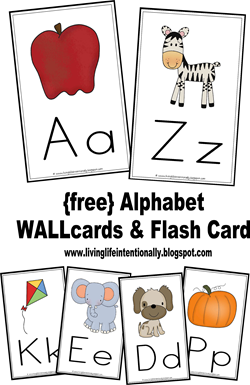 FREE Alphabet Wall Cards and Alphabet Flashcards - these are such nice, simple flashcards to print on cardstock and put in your homeschool or classroom. So many uses for flashcards like practicing and hands on alphabet hunts, matching,etc.