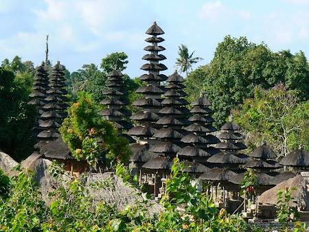 18. Temple din Bali.JPG