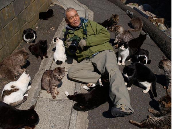 Island Cats Tashirojima