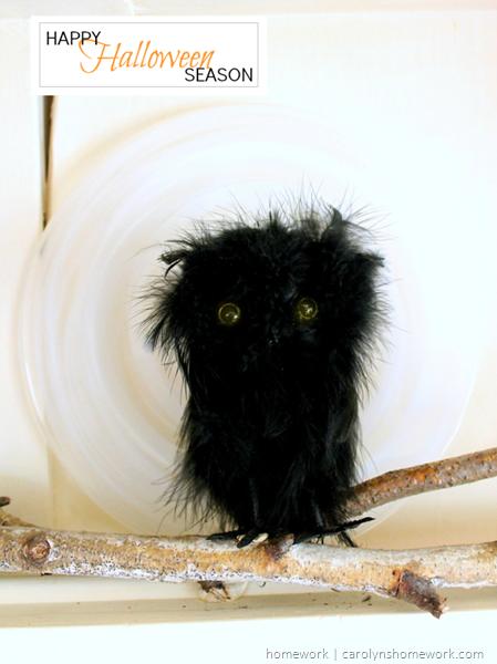 Halloween Owl Decor via homework | carolynshomework.com