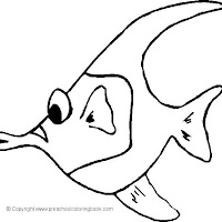fish 19.jpg