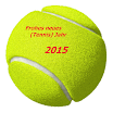MTO_Tennis_Ball.png