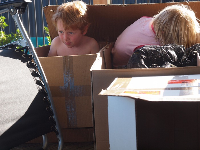 playing in boxes