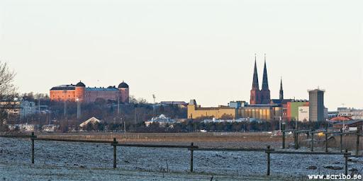 Vy av Uppsala från Lilla Djurgården
