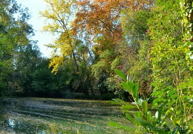 Glória Ishizaka - Outono 2013 - 85
